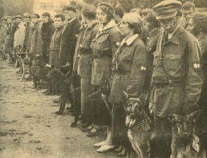 Центральной школы военного собаководства, 1931