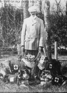 Эдвин Ричардсон и его собаки